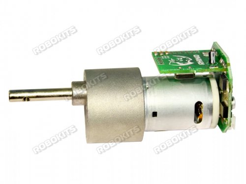 High Torque 12V DC Geared Motor 300RPM with Driver