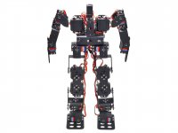 17DOF Humanoid Robot DIY Kit without Electronics