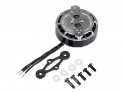 Tarot 4008 Martin Long Endurance brushless motor TL2955 for UAV